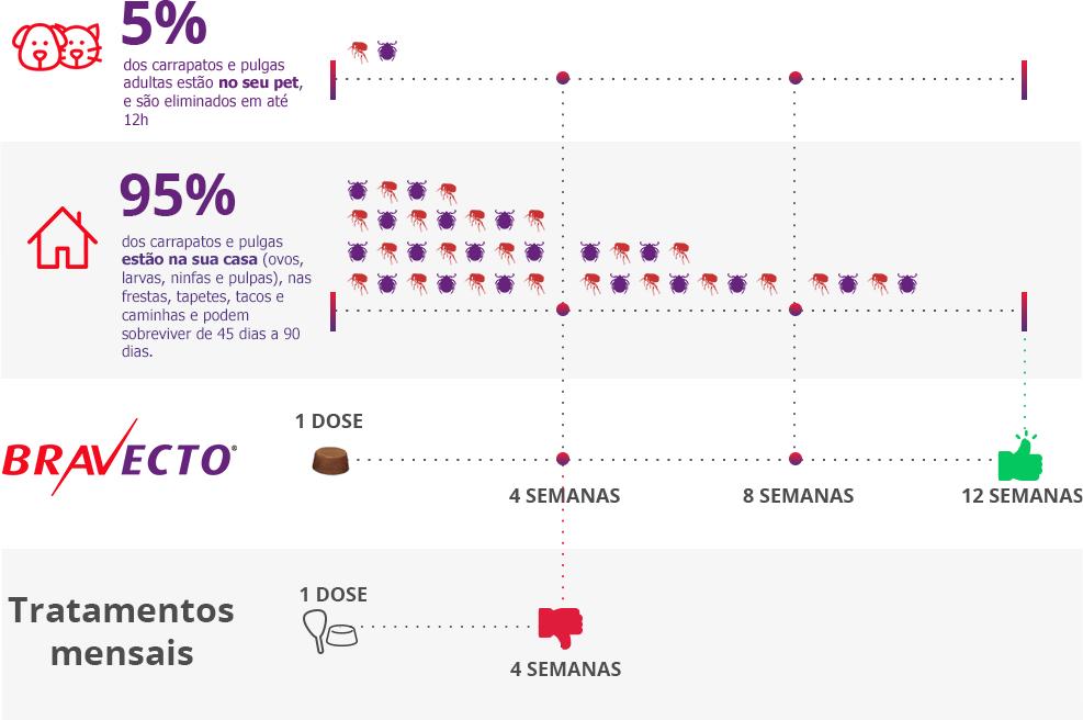 efeitos colaterais do Bravecto infográfico