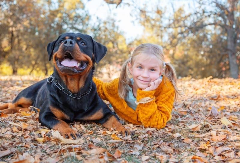 Rottweilers e crianças