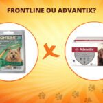 Frontline ou Advantix